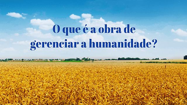 O que é a obra de gerenciar a humanidade?