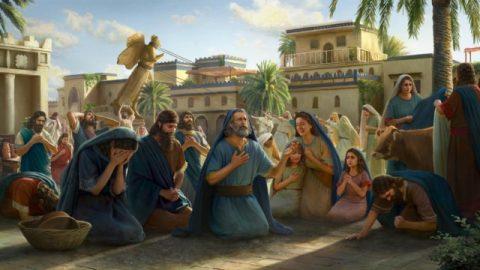 Se sua crença em Deus for verdadeira, você receberá o cuidado Dele com frequência