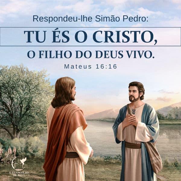 Evangelho (Mateus 16:16) Respondeu-lhe Simão Pedro: Tu és o Cristo, o Filho do Deus vivo.