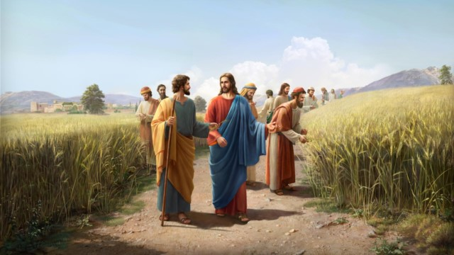 O Filho do homem até do sábado é o Senhor