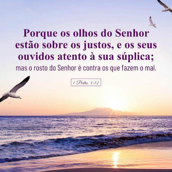 (1 Pedro 3:12) Porque os olhos do Senhor estão sobre os justos, e os seus ouvidos atento à sua súplica; mas o rosto do Senhor é contra os que fazem o mal.